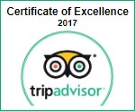 lithies tripadvisor award